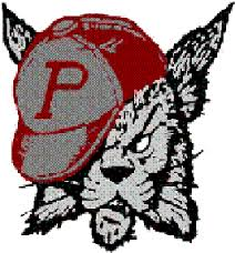 suzy stateliner custom state champ ring - phillibsburg high school
